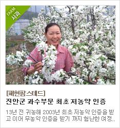 친환경 농법으로 사과 재배를 하고 있는 해현팜스테드